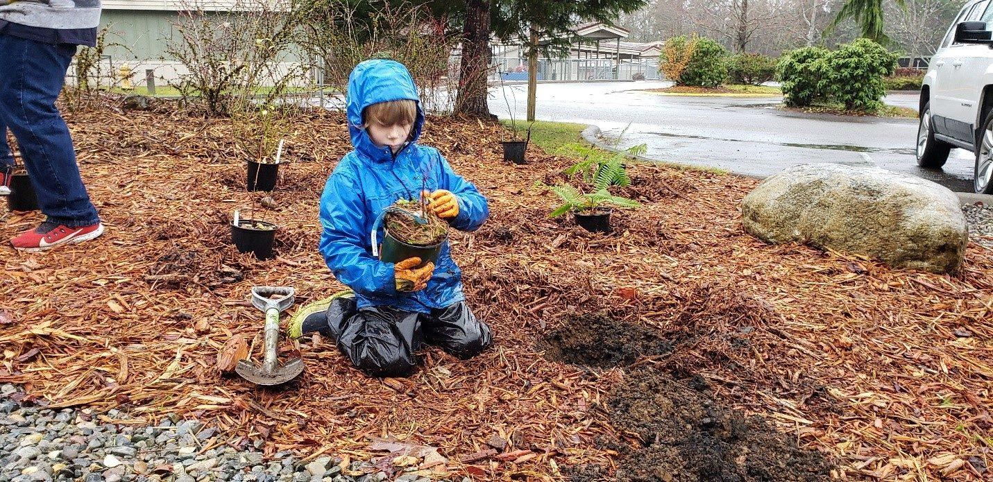 Student Planting in Rain Garden